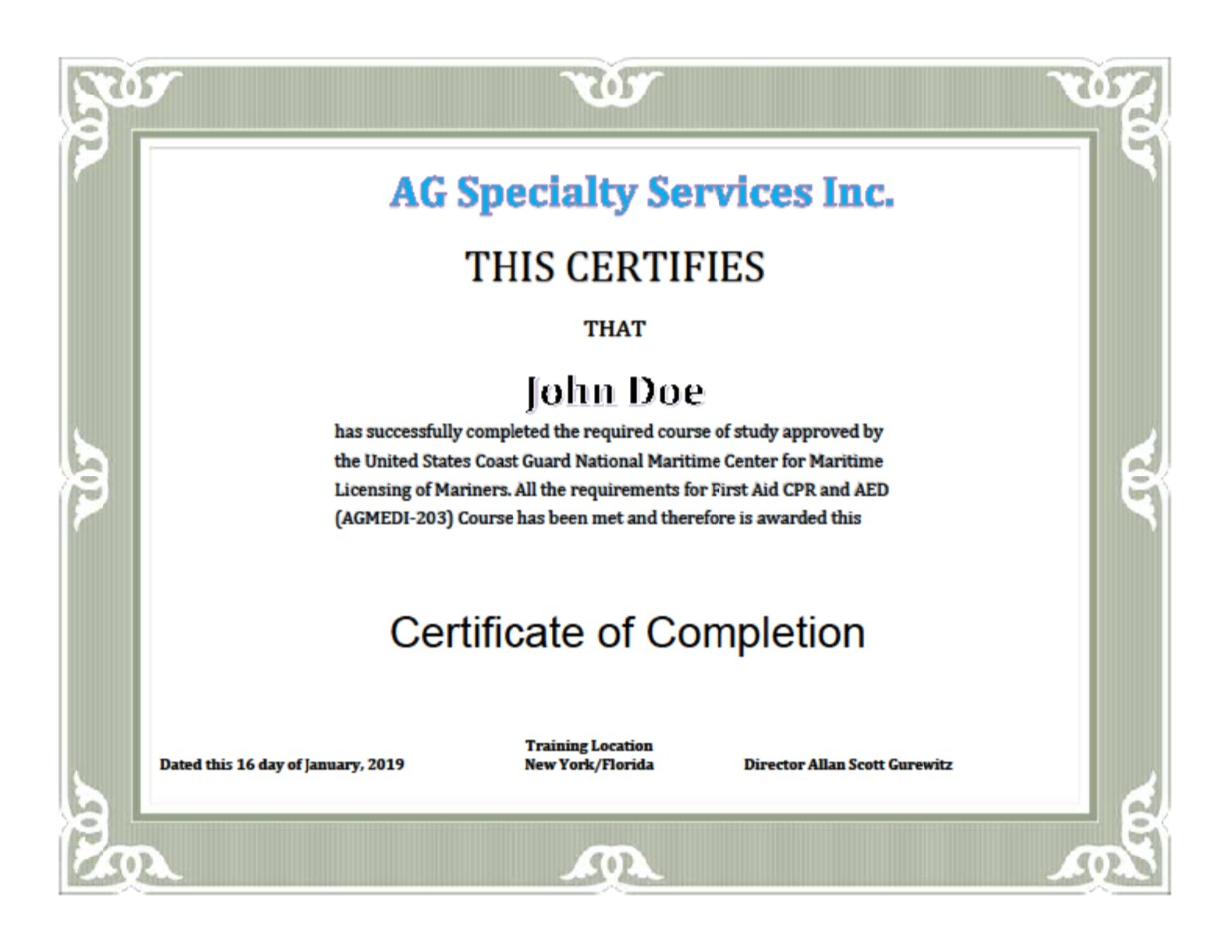 New York Uscg Nmc Stcw Approved First Aidcpraed 1 Day 8 Hours Ag